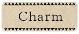 天然石チャーム